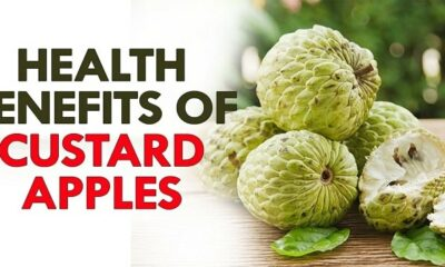8 Surprising Health Benefits of Custard Apple
