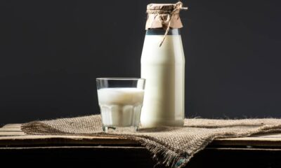 Whats the Best Milk to Drink for People with Diabetes?