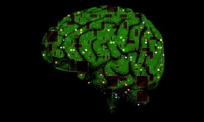 The Power of Human Intelligence In Machine Learning