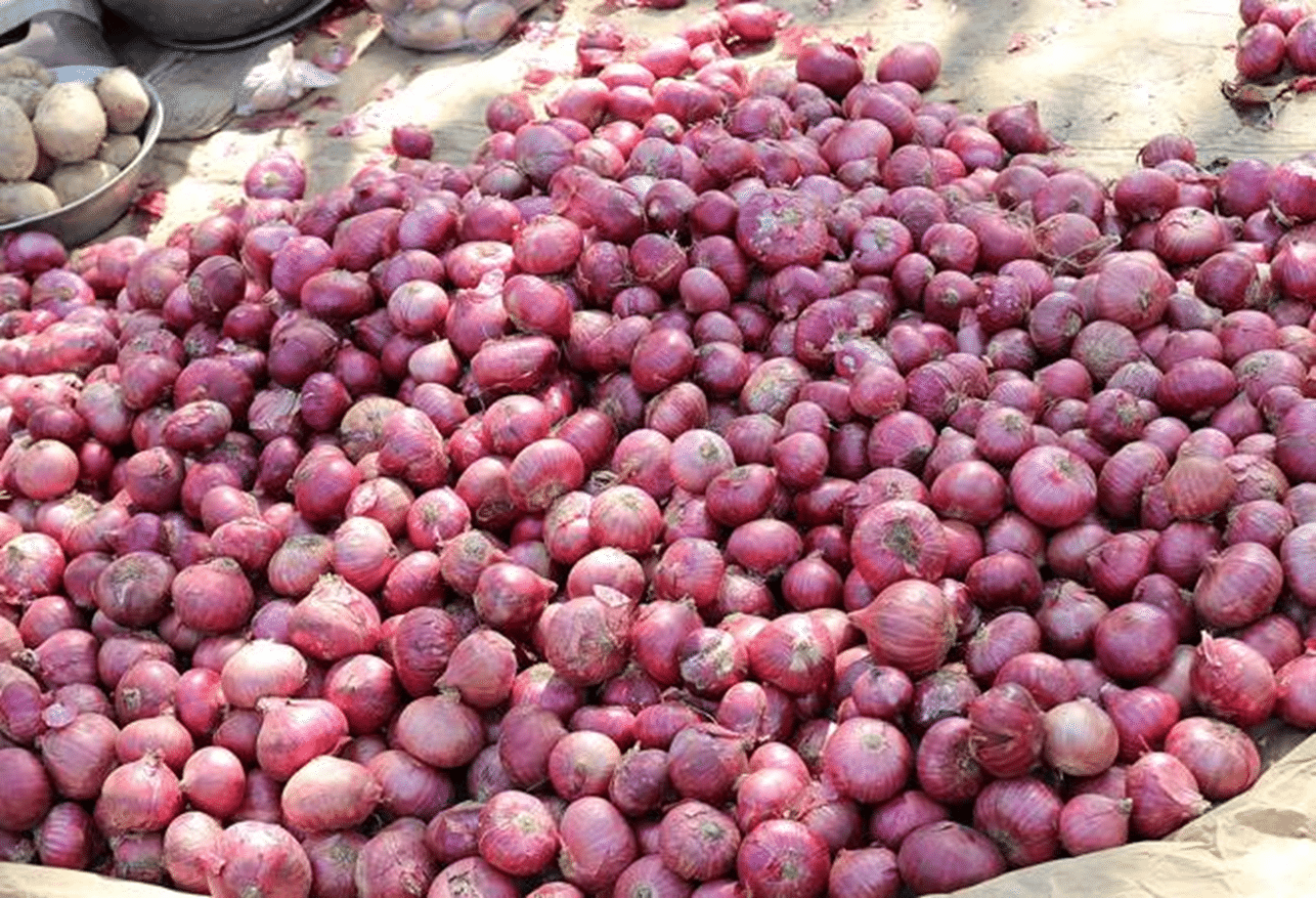 Maharashtra: Farmer earns Rs.6 on selling 2,657 kg of onions; sends it to CM through money order