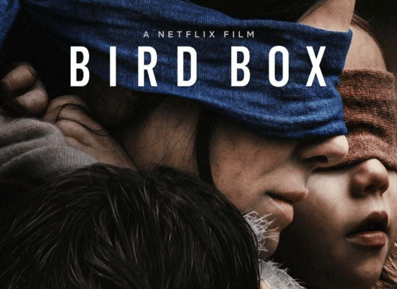 Bird Box Review – A catchy plot, Executed in a lazy style