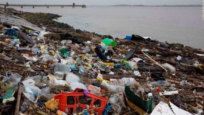 Now Every Person Swallows 5 Grams of Plastic Every Week