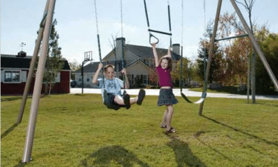 Lifetime A-frame swing set