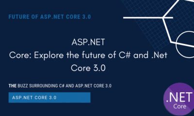 Future of C# and Asp.Net Core 3.0