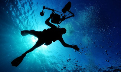 Essentials You Need For a Scuba Adventure