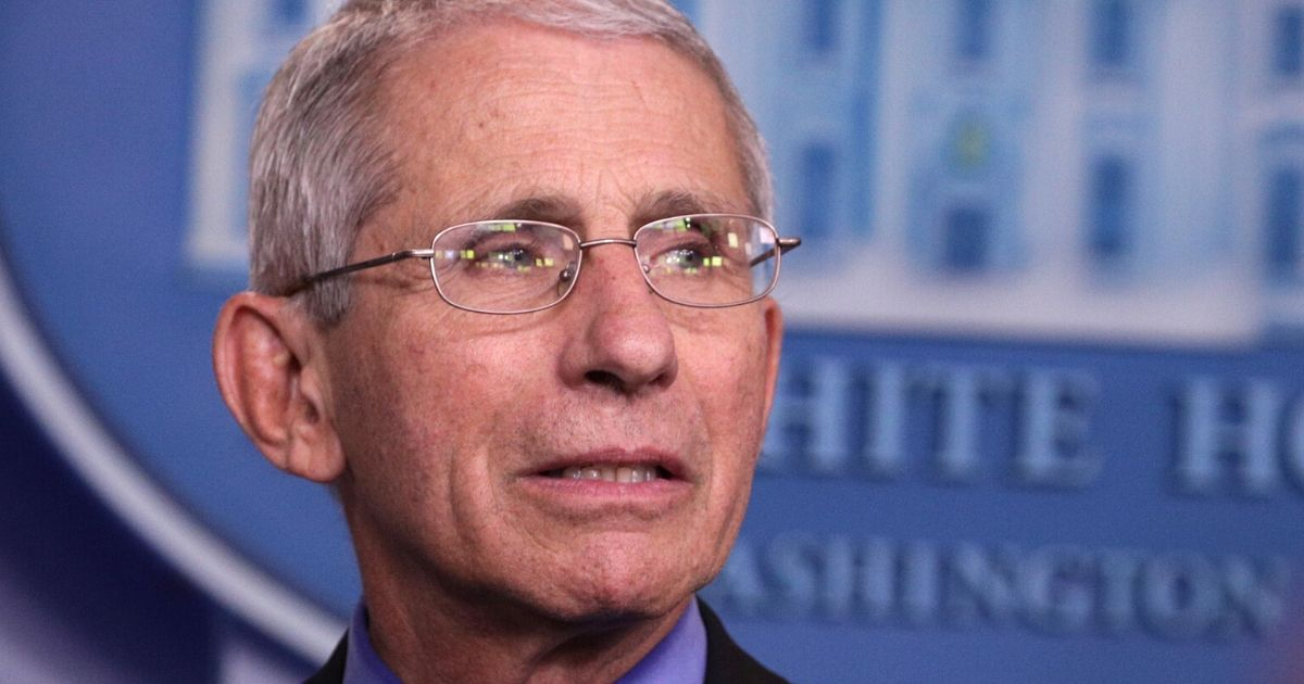 The reliance on 'deficient' models by Paul and Biggs Slam Fauci