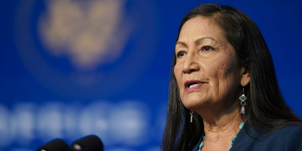 Haaland, the internal candidate, promises 'balance' on energy, environment,