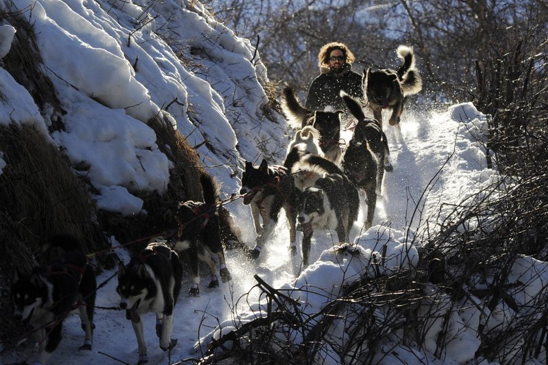The Iditarod must change its route due to a pandemic, as well as take other precautions.