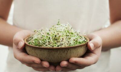10 Health Profits from consuming Sprouts in Daily Routine