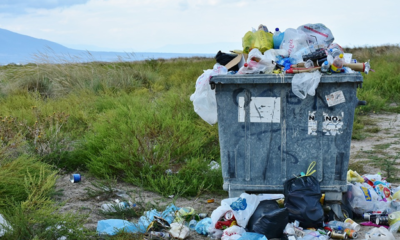 9 Turn Down Effects of Improper Waste Removal