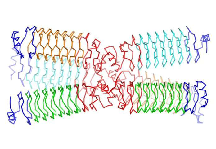 Synthetic_Proteins