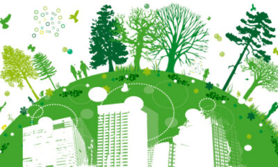 Way to Go Green Your Cities
