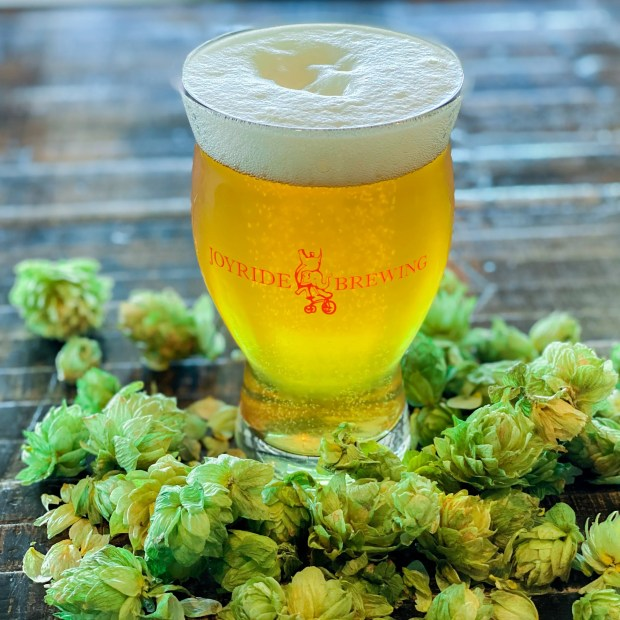 Tis the season — for fresh hop beers