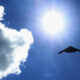 B-2 stealth bomber out of service after emergency landing in Missouri