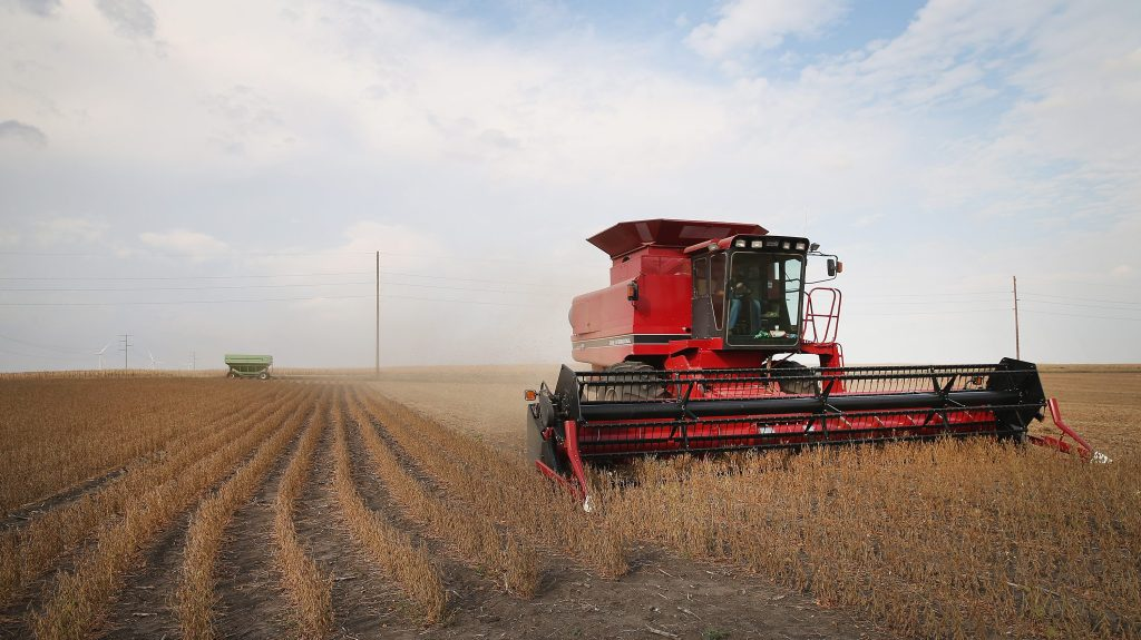 Even as drought eases, toll on Minnesota crops appears to be final