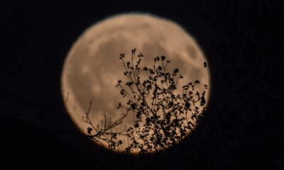 Harvest Moon to welcome fall. Here's the best night to view
