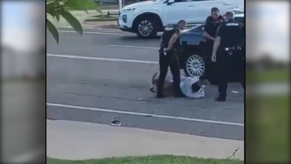 Man who filmed police dog biting suspect shares video with FOX 2