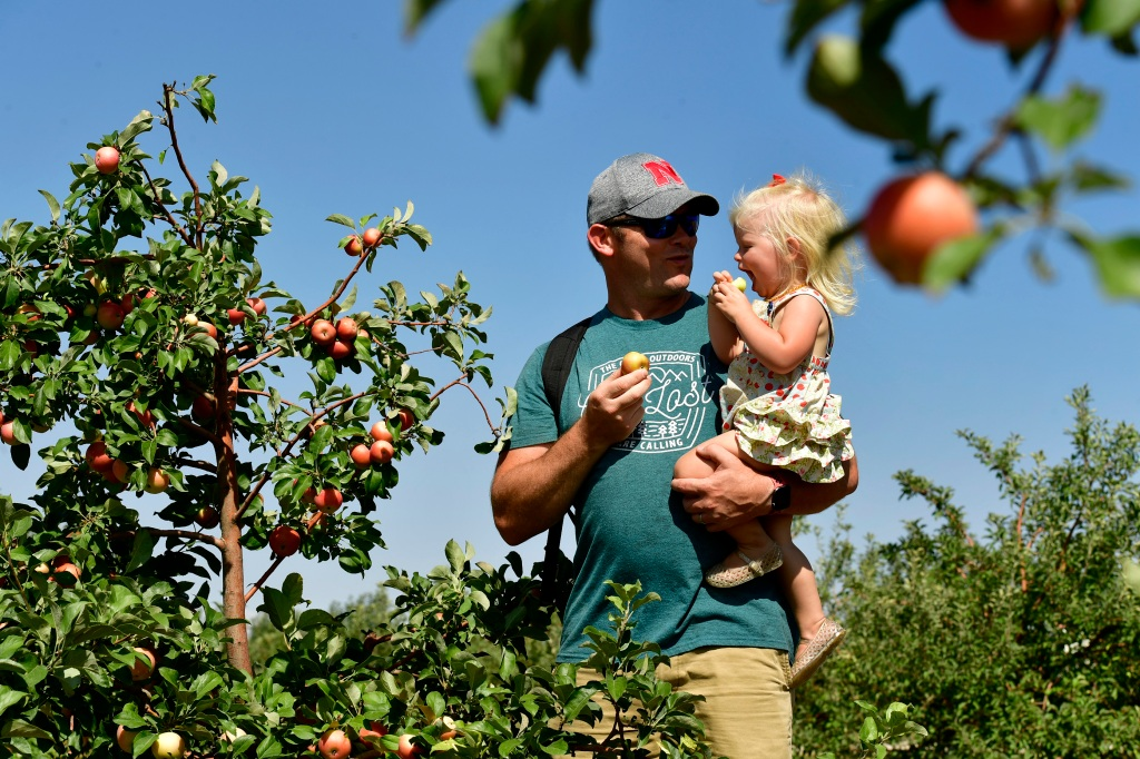 Apple picking on the Front Range? While the orchards are limited, so far the 2021 crop is not.