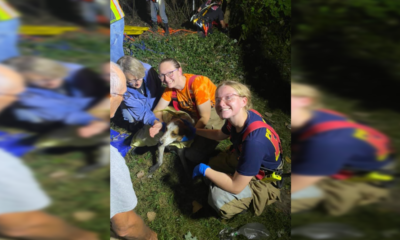 Dog rescued in Madison County after trapped in 40-foot well