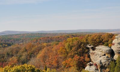Do you know about the 'Illinois Ozarks'? It's not just in Missouri & Arkansas