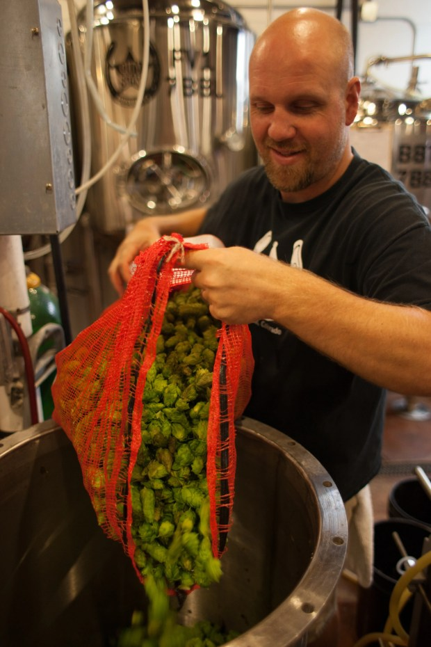 1632832316 951 'Tis the season — for fresh hop beers
