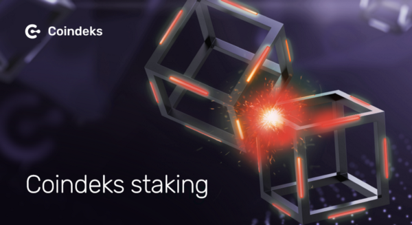 COINDEKS.ORG - Staking Aggregator Is a New Step in the Development of Blockchain Technologies and the DeFi Sector