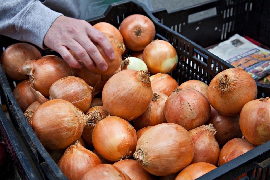 You may need to toss your onions as salmonella outbreak has been linked to the vegetable