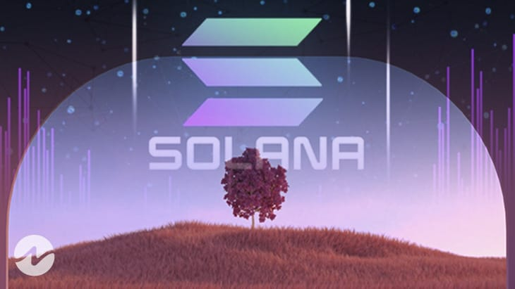 Solana's Growth Has Been on a Rise, but There's a Catch!